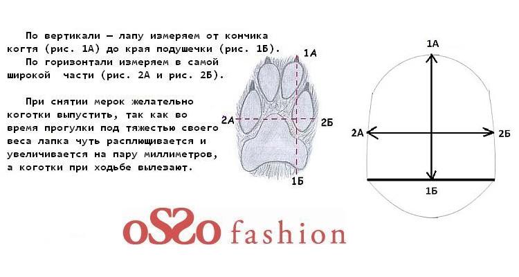 схема-2.jpg